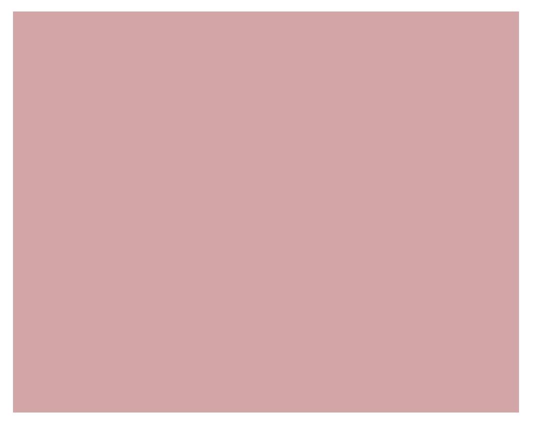 Lise Tailor